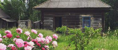 Деревянный дом в Голубовке возле древнего Любеча